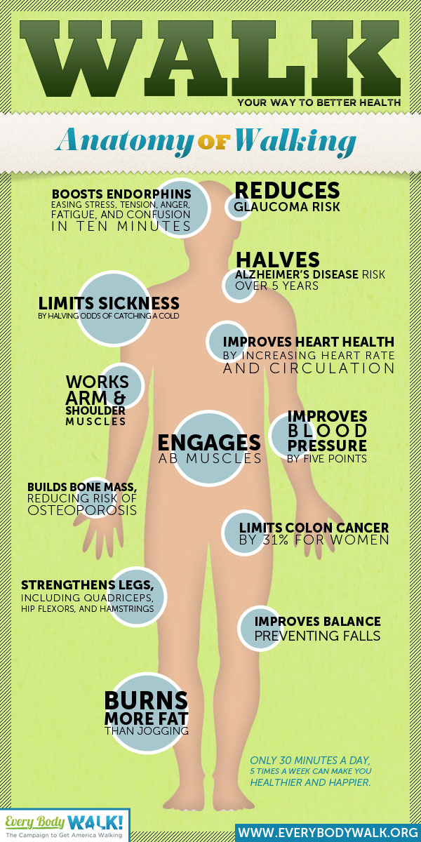 Benefits of walking infographic.