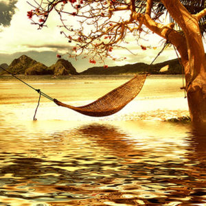 Hammock over water.